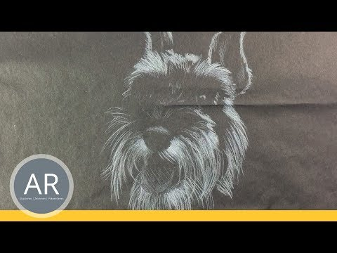 Hunde-Portraits zeichnen lernen. So kann dein Hunde-Porträt aussehen. Tiere zeichnen lernen