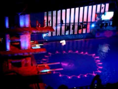 Шоу олимпийских чемпионов по синхронному плаванию 2013