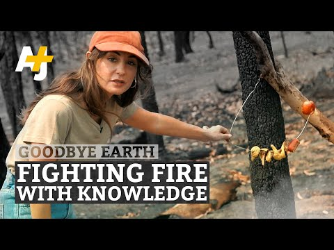 Could Aboriginal Burns Save Australia From Fires?