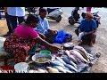Amazing Fish Cutting | #Indian Street Fish Market | Streetfood