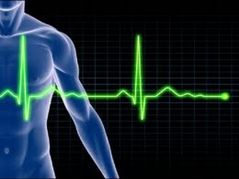exercise physiology ecg lab • gain an understanding of how researchers contribute to our knowledge of exercise physiology ecg interpretation lab section 7 exercise.