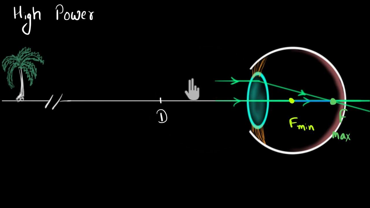 Bates látás-helyreállítási technikája A tartalom