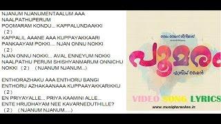 Njanum Njanumentalum karaoke - Poomaram Original Studio Quality Minus Track