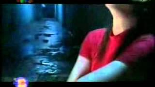 Tình Hoàng Hôn Tuấn Hưng VTV bài hát tôi yêu