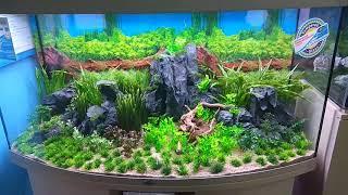 Оформление аквариума искусственными декорациями под живые растения