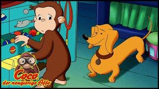 Coco der Neugierige Affe 🐵 Viel Spaß mit Kati Ups 🐵 Ganze Folgen 🐵 Cartoons für Kinder🐵 Staffel 4
