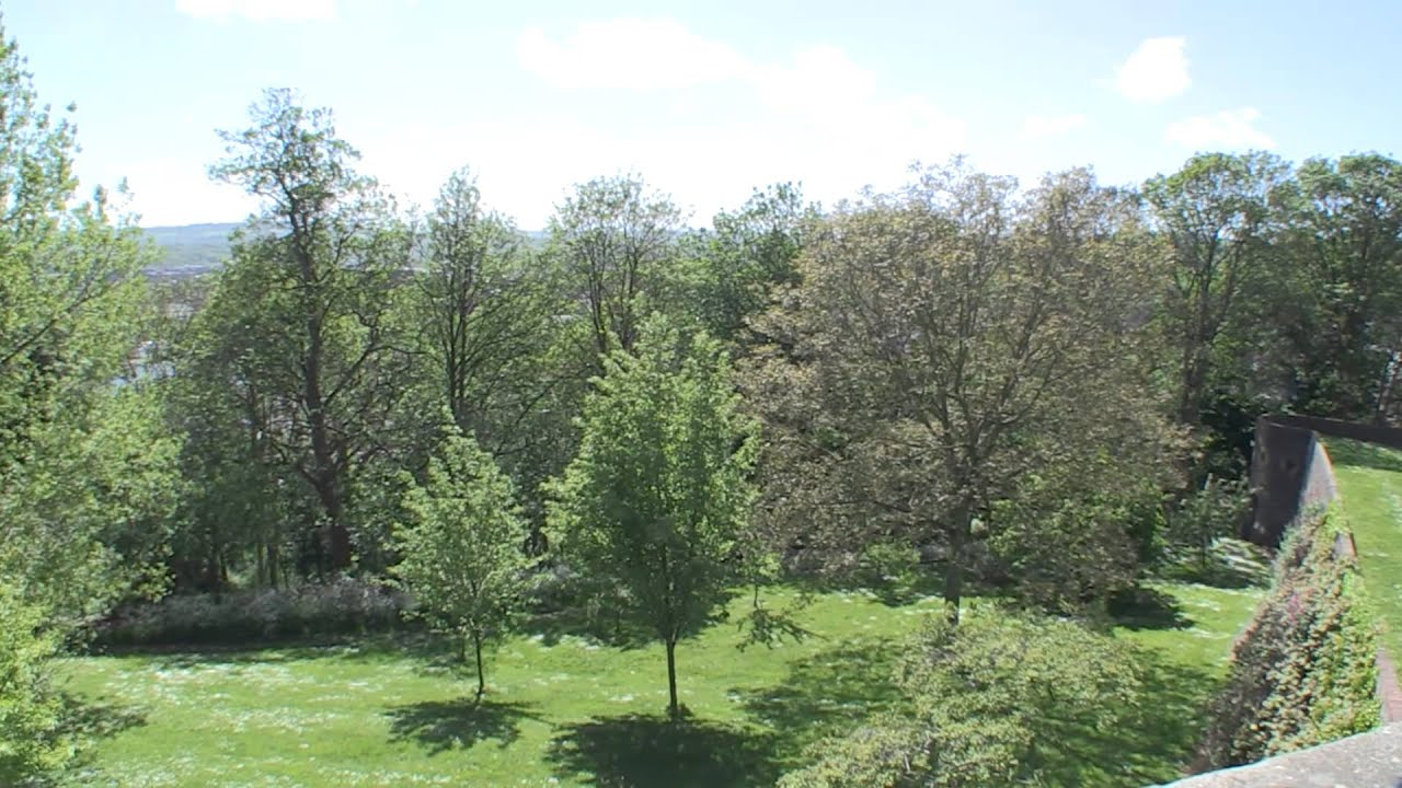 The secret gardens of Goldney Hall in Bristol - hidden grottos and a Sherlock film location