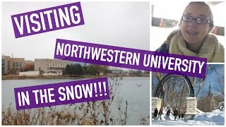 Visiting Northwestern University IN THE SNOW | VLOG