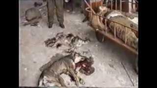Миротворцы война в Чечне 2