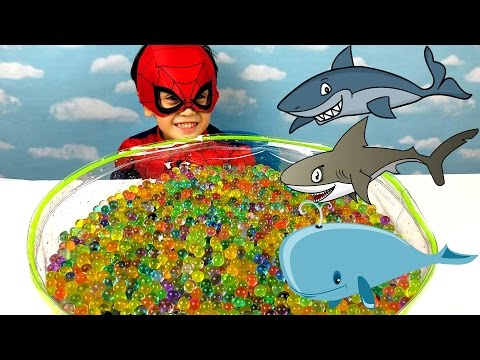 Thumbnail: Learning Sea Animals Shark Names Playing Hide n & Seek Spidey Video Toddlers Kids Spider-Man Orbeez