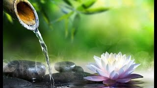 Solfeggio 528 Hz | Water Sounds | Tibetan bowls | OM Mantra ➤ Positive Healing Energy