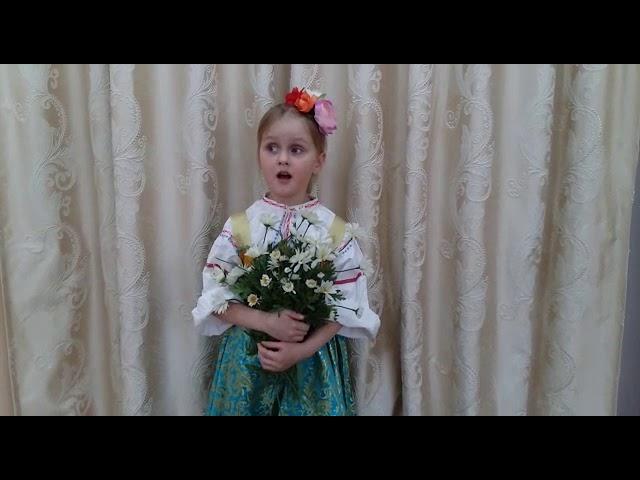 Изображение предпросмотра прочтения – АнастасияКиселева читает произведение «Тень-тень потетень» (Русский фольклор )