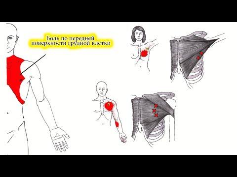 Болит живот и отдает в грудную клетку