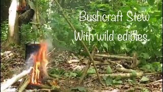 Bushcraft Stew with Foraged Wild Plants Cooked over a campfire.