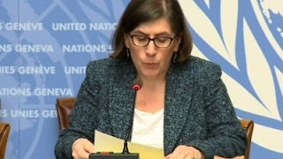 Ark. Executions Worry UN Human Rights