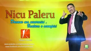 Nicu Paleru - Doamne ma nenorocisi , bautura o scumpisi (Parodie) Muzica de Petrecere