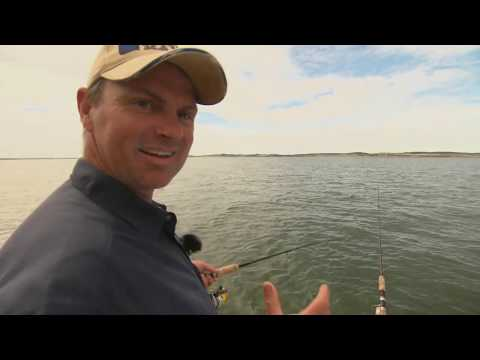 BFSB season 1 Ep 12 Westernport whiting and gummies