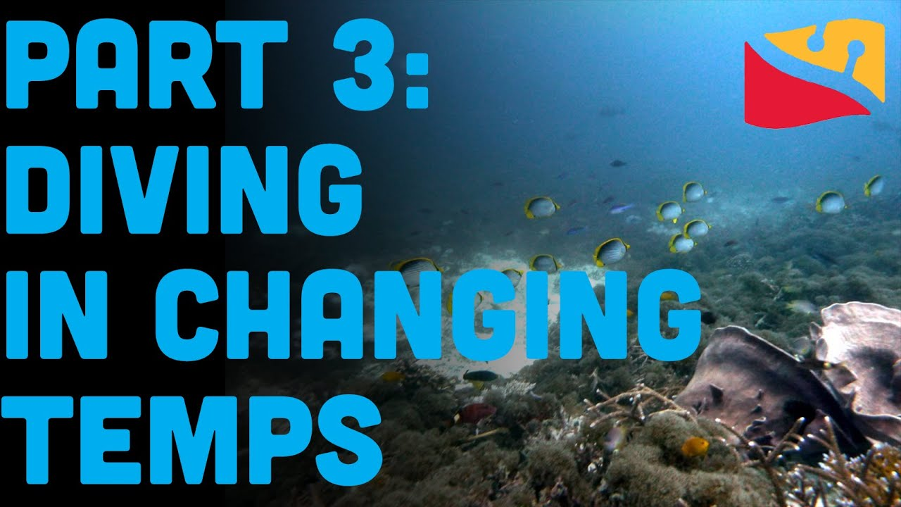 How To Scuba Dive In The Ocean Part 3: Temperature Presented By Dive Rite