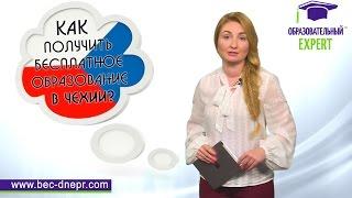 Бесплатное образование в Чехии через языковые курсы   Образовательный Эксперт