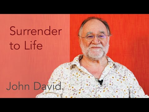 Surrender to Life • John David Satsang