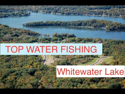 Topwater Bass On Whitewater Lake