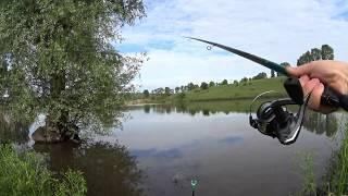 Карп карась Рыбалка на озере в Водянах
