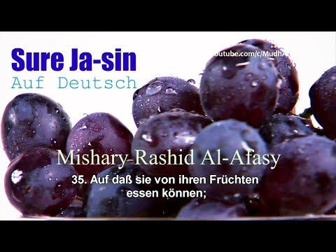 sure-jasin-(ya-sin)-|-auf-deutsch-[31-40]-┇-mishary-rashid-al-afasy-ᴴᴰ