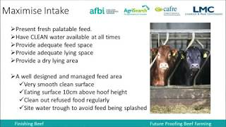 Winter Feeding of Finishing Cattle - Ciaran Hamill (CAFRE)