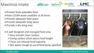 Winter Feeding of Finishing Cattle - Ciaran Hamill (CAFRE)