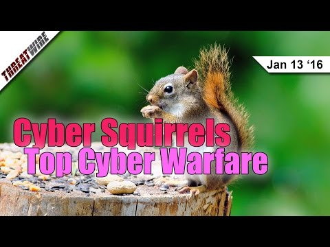 Squirrels Top Cyber Warfare, Shadow IT, Turn On 2FA Now. Please. - Threat Wire