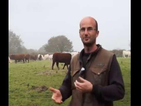 Yannick Frezel éleveur bio nouvellement installé-