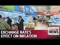BOK board member says exchange rate's effect on lowering inflation started to decrease this year
