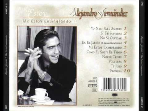 ALEJANDRO FERNANDEZ - ME ESTOY ENAMORANDO (CD COMPLETO)