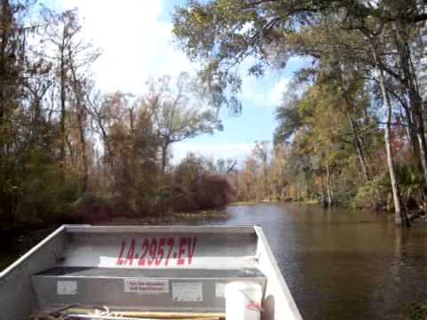 New Orleans, Louisiana Swamp Boat Tour at High Speed