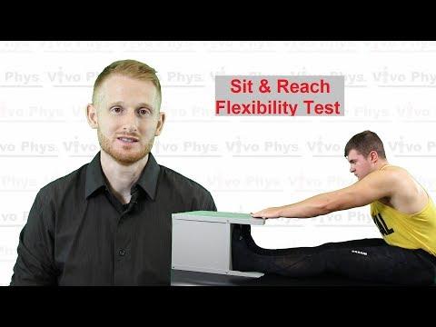 Sit and Reach Flexibility Test