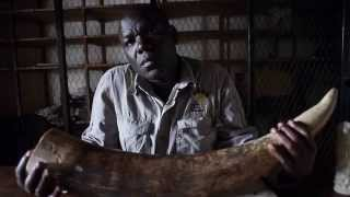 Stop Wildlife Crime. Protect Malawi's Wildlife