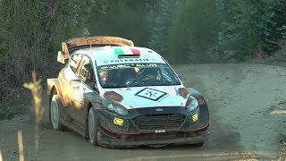 Day 2 - Rally Chile 2019 - L. Bertelli / S. Scattolin - Ford Fiesta WRC+