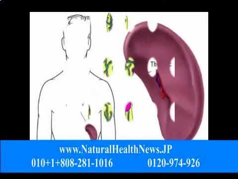 リンパ系とがんの開発
