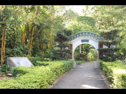 Herbal Gardens at CUHK 中大藥園