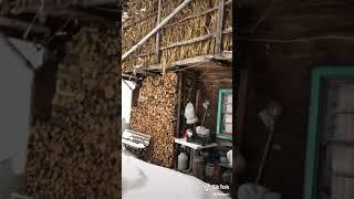 Dil tengi kar yağar ayarlanır