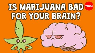 Is marijuana bad for your brain? - Anees Bahji