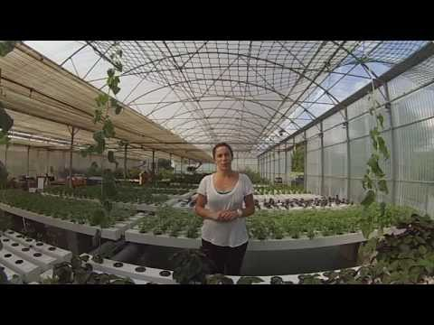 Hydroponic Micro Farming in France - Les Sourciers & GHE