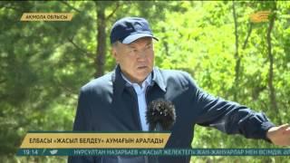 Елбасы Астана іргесіндегі «жасыл белдеуді» аралады