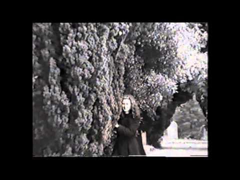 Deadly Deception - The Trailer.avi