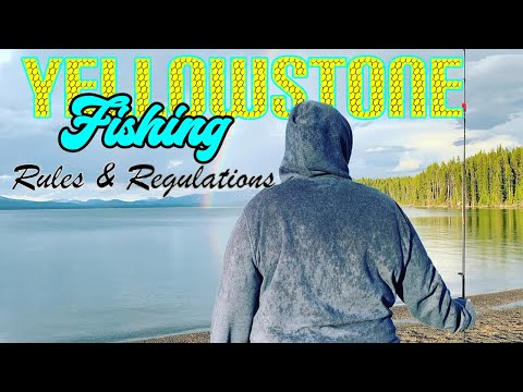 Before you fish in Yellowstone National Park / Rules and Regulations