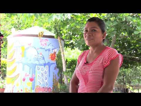 Solares sustentables en la Huasteca Veracruzana