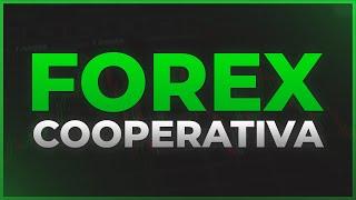 Cooperativa do Forex p/ entrada em MASSA na empresa, vemm!!!