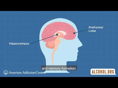 How Does Alcohol Affect the Teen Brain?