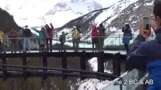 Glacier Skywalk in Jasper National Park, Alberta, Canada