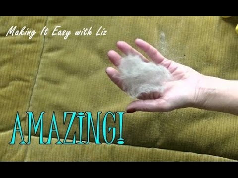AMAZING! The Absolute Best Way to Remove Pet Hair - YouTube